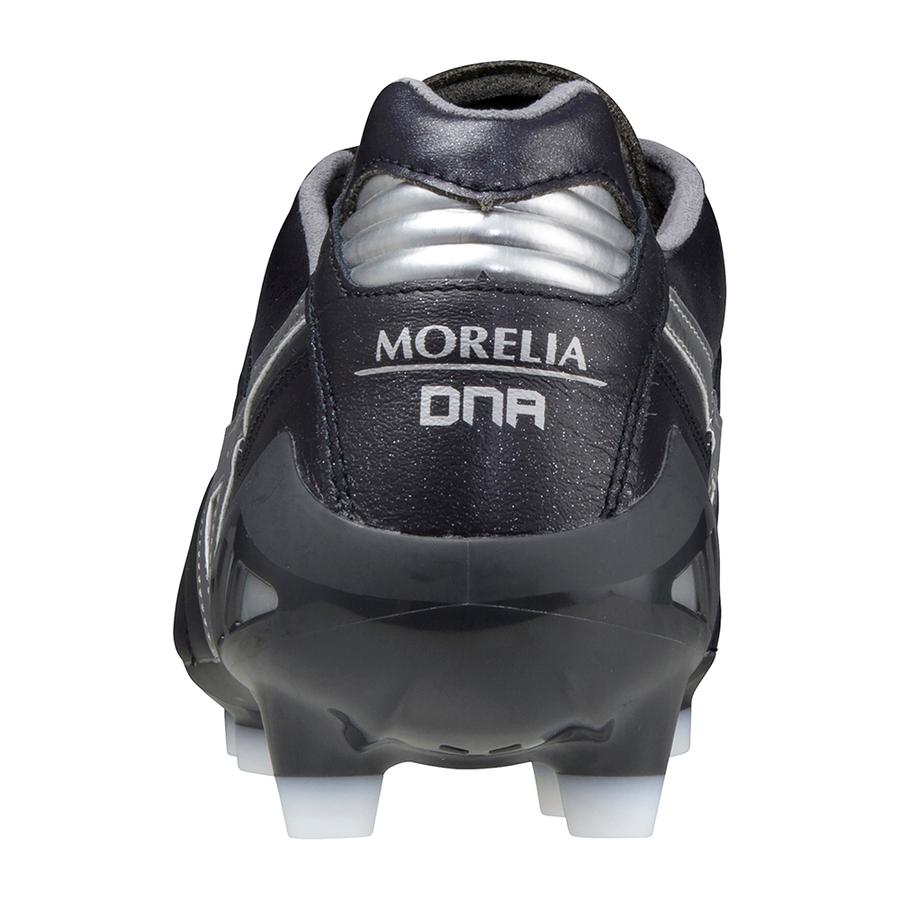 Morelia DNA Japan