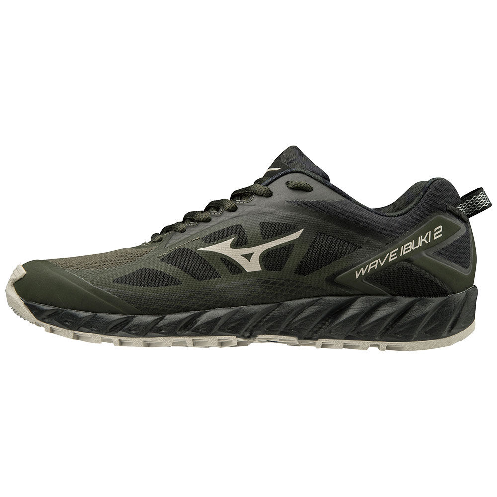 best mizuno shoes for walking everyday europe style