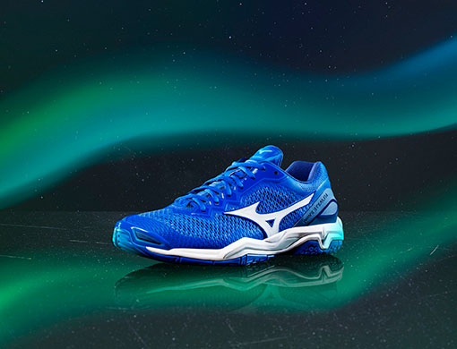 Mizuno Men Handball Shoes